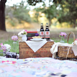 picnic party hire