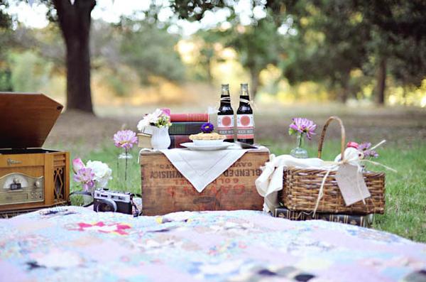 picnic party hire